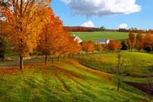"Постер, картина, фотообои ""Vermont fall landscape of rolling hills with orange foliage"""