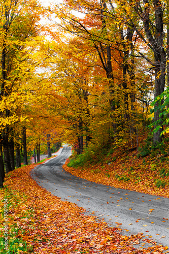 Colorful autumn trees on a winding country road in Vermont