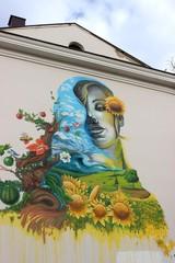 рисунок на стене дом
