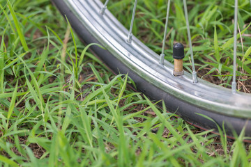 a valve of a tire on grass background