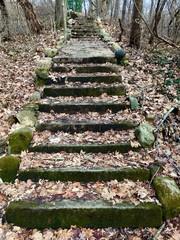 Foot Path Steps