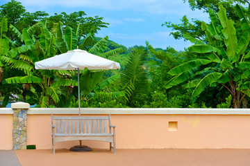 Wooden bench with umbrella and palm trees