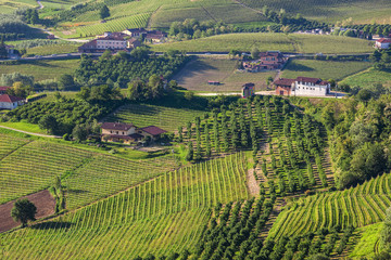 Rural houses among green hills and vineyards of Piedmont, Northe