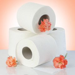 toilet paper rolls with natural flowers