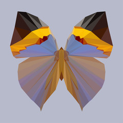 polygonal geometric abstract butterfly background