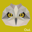 Polygonal abstract geometric owl background