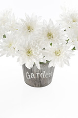 Bouquet of fresh white chrysanthemum in a wooden pot