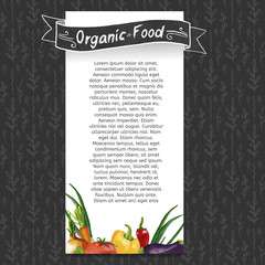 Template flyer or brochure with the decor of vegetables drawings