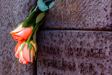 roses on a memorial wall