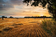 Leinwanddruck Bild - Rural landscape image of Summer sunset over field of hay bales