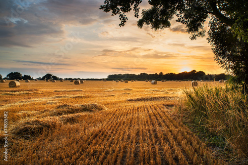 Leinwanddruck Bild Rural landscape image of Summer sunset over field of hay bales