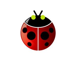 ladybug red