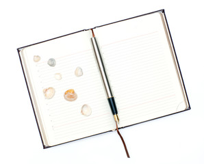 Notebook and shells