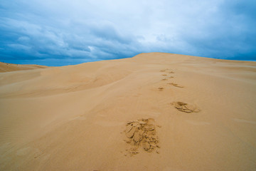 Desert footprints