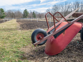 Wheelbarrow community garden plot spring preparations