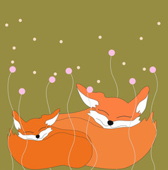 Family foxes and sweet dreams
