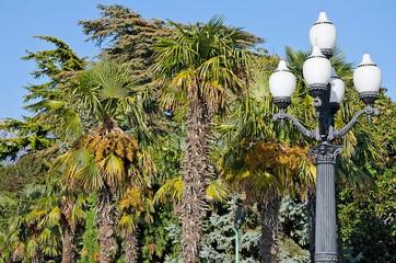 Old street lamp in Yalta