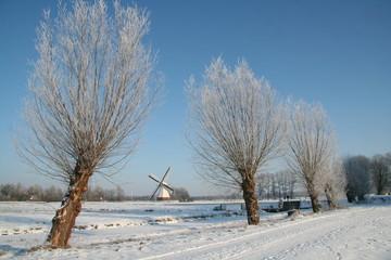Winters landschap met molen en bomen in Nederland