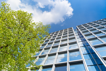 Hochhaus  - modernes Bürogebäude und Bäume