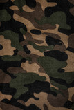Fototapety Texture of a camouflage