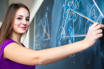 Portrait of a pretty young student writing on the blackboard