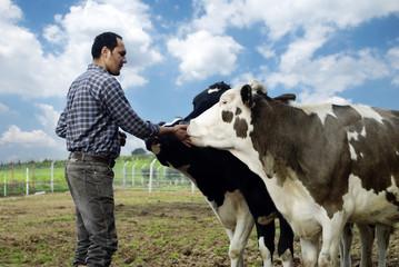 Farmer with cows