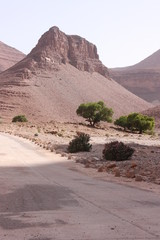 Paysage du Maroc 8