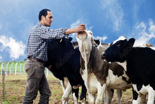 Farmer with cows - 79868373