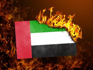 Flag burning - United Arab Emirates