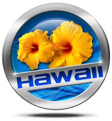 Hawaii - Metal Icon with Hibiscus