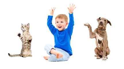 Joyful boy, kitten and puppy