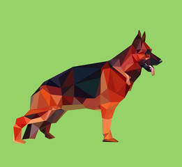 German shepherd low poly vector