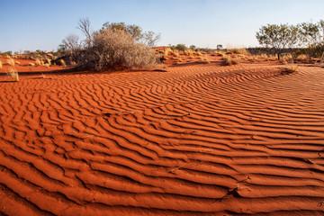 wind undulating sand,