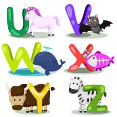 Illustrator alphabet U,V,W,X,Y,Z
