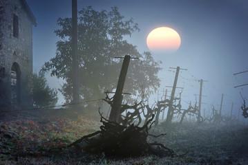 Casolare di campagna all'alba