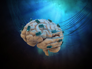 Connected brain