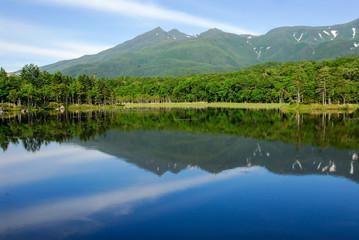 盛夏の知床五湖