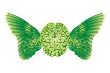 brain and wings