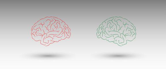 cervelli, comunicare, comunicazione, parole, parlare