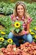 Woman planting sunflower.