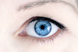 Leinwanddruck Bild - Blue Eye