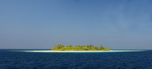 maldives tropical paradise beach crystal water coconut tree