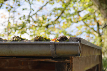 Close-up of a gutter at a roof.
