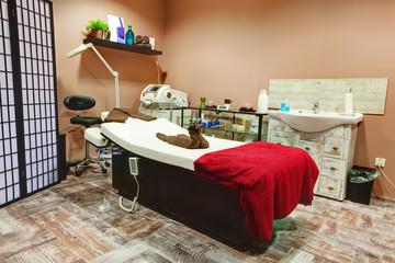 Beauty salon and massage interior. Relaxing, zen design