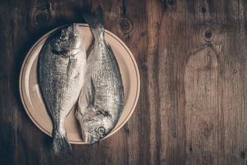 Fresh sea bream fish
