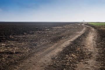 path through  plowed field