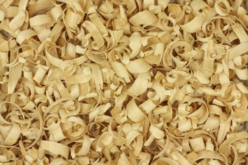 thin wood chips abstract background