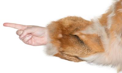 Eine Frauenhand zeigt auf etwas mit der Hand und dem Zeigefinger