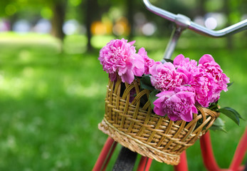 Vintage bicycle with basket with peony flowers