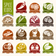 Spice icon set - 79914127